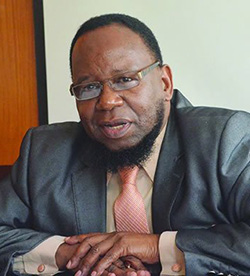 Education reform: Minister Dokora  not completely mad!