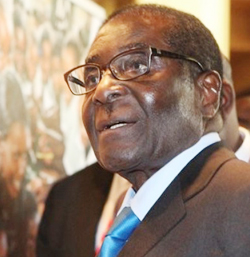 Mugabe: Power  and allure of the libidinal economy