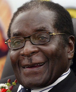 Zim corruption: It's Mugabe, stupid