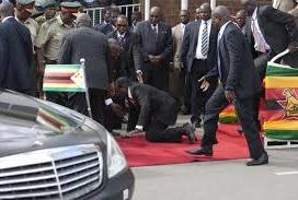 Who  is abusing Mugabe?