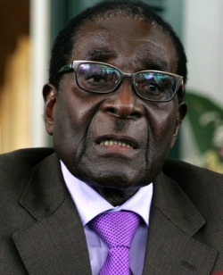 Amai Mugabe Vs Far-Right Idealism