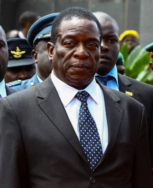 Change must follow Robert Mugabe's fall from power