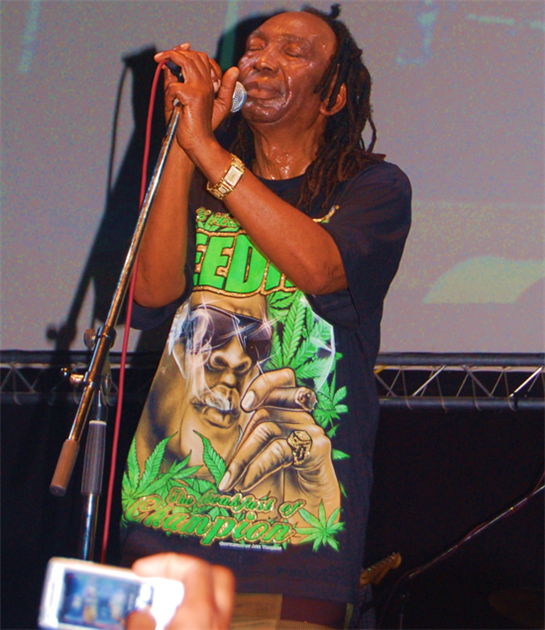Mapfumo lands Hollywood movie role