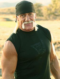 Hulk Hogan sacked as taped racial slur surfaces