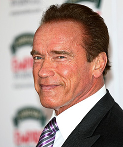 Schwarzenegger  stars in campaign to save African elephants