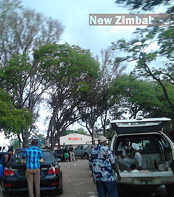 Zimbabweans  find comfort in beer and betting