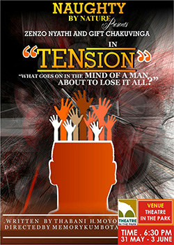 Bulawayo succession  play 'Tension' set for Theatre in The Park