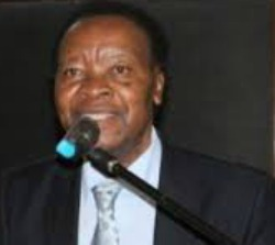 Professor Zindi says Zim music doing well abroad,  Diasporans to thank