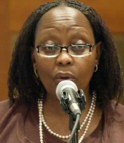 SA delegation explores Zim opportunites