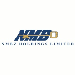 NMBZ Holdings  in profit warning