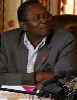Diaspora  critical for economic growth, opposition