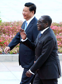 No China blank cheque for Mugabe