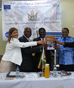 Zimbabwe launches cotton export strategy