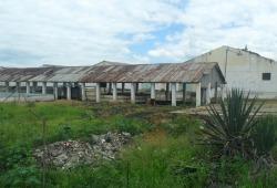 Gwanda-based Liebigs meat factory in ruins