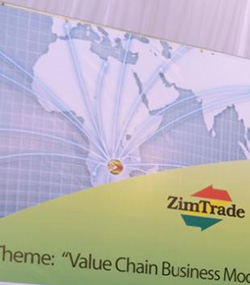 Zimbabwe exports  to grow by 3pct in 2015, Zimtrade report