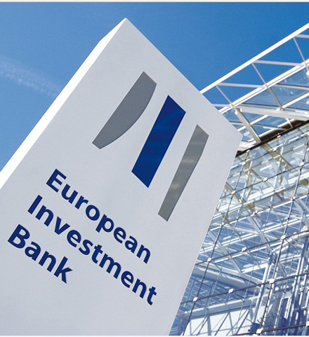 EU bank  pledges private sector support, rules out fiscal support to govt