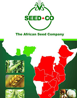 SeedCo revenue  down 11 pct on maize seed shortages