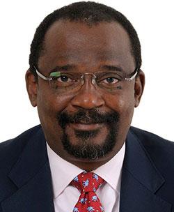 Mpinga bids  to retain position as BNC chair despite Mwana exit