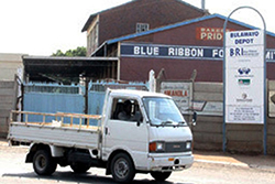 Tanzania's  Bakhresa to inject $20 mln into Blue Ribbon, shareholders offered $1