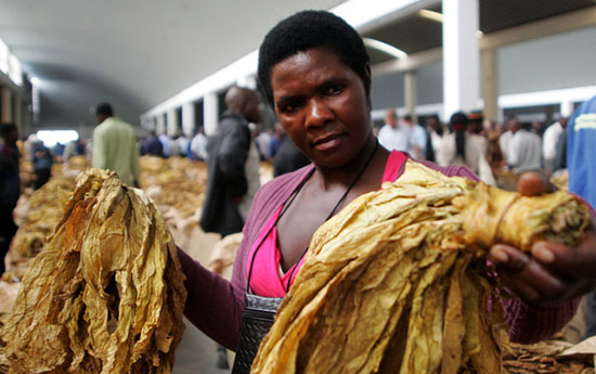 Tobacco sales up 33.3 percent in 2017