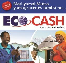 Ecocash suspends international payments