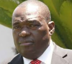 Gen Moyo launches 'economic diplomacy', says to  facilitate diasporans' investments
