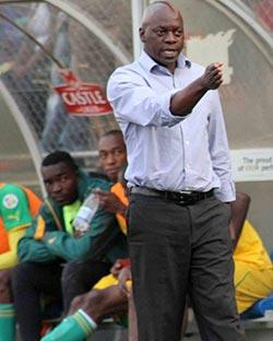 Government promises Warriors $88k support  CHAN preparations … ZIFA president Cuthbert Dube and CEO Jonathan Mashingaidze