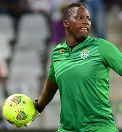 Dynamos goalkeeper joins SA side