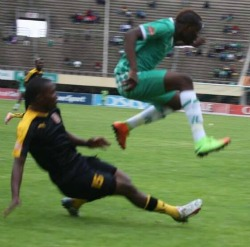 Caps in Hwange draw as Highlanders wallop Rhinos 2-0