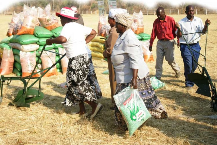 Zanu PF MP, Councillor Arrested For Stealing ED's Rice, Inputs