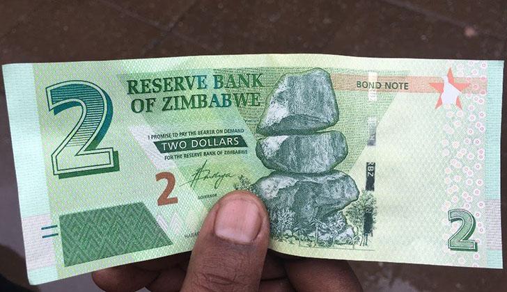 Zimbabwe needs own currency: US