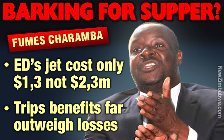 It was only $1, 3 not $2, 3 m, fumes Charamba in defence of ED private jet cost
