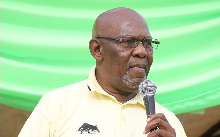 80 political parties are Zanu PF proxies, says Dabengwa