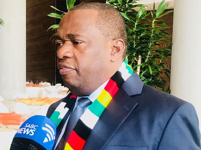 Foreign affairs minister Moyo backtracks on allowing diaspora vote