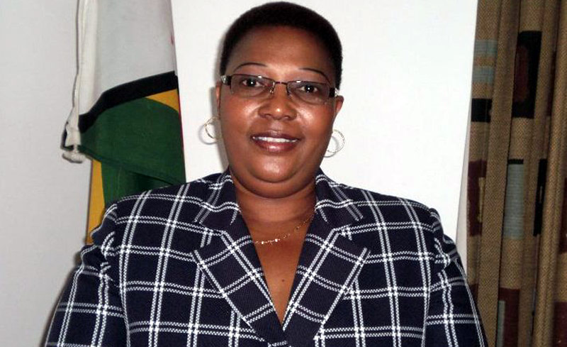 Zanu PF attacked Khupe in Buhera and Bulawayo- Chamisa