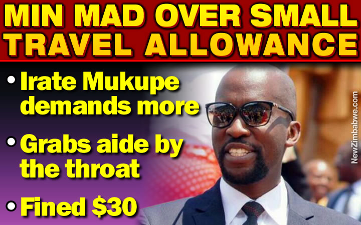 Minister Mukupe blows top, chokes senior bureaucrat over 'small' travel allowance