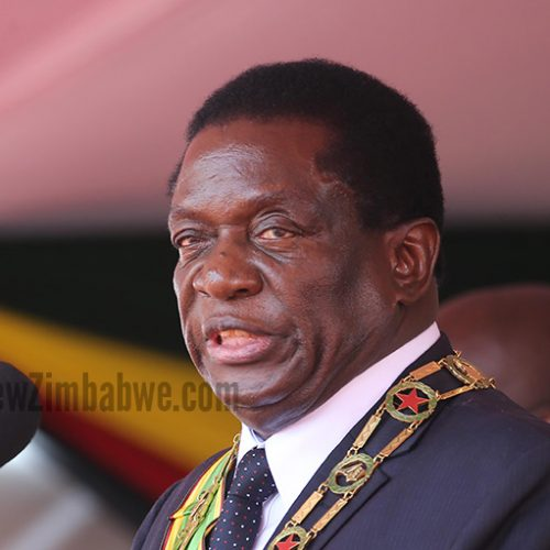 MDC MP arrested for calling Mnangagwa a dog; case reported by 89-year-old villager angry at being insulted for voting Zanu PF