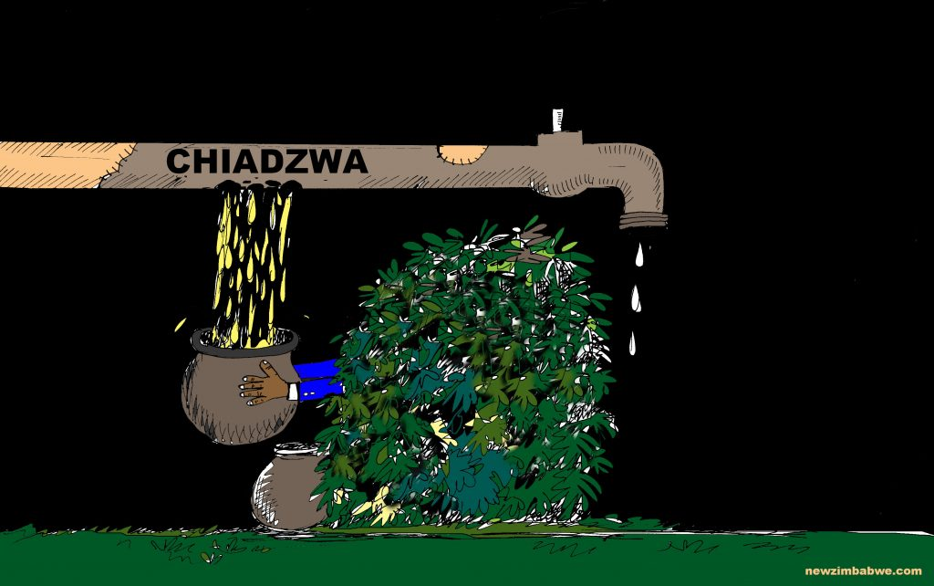 Chiadzwa leakages