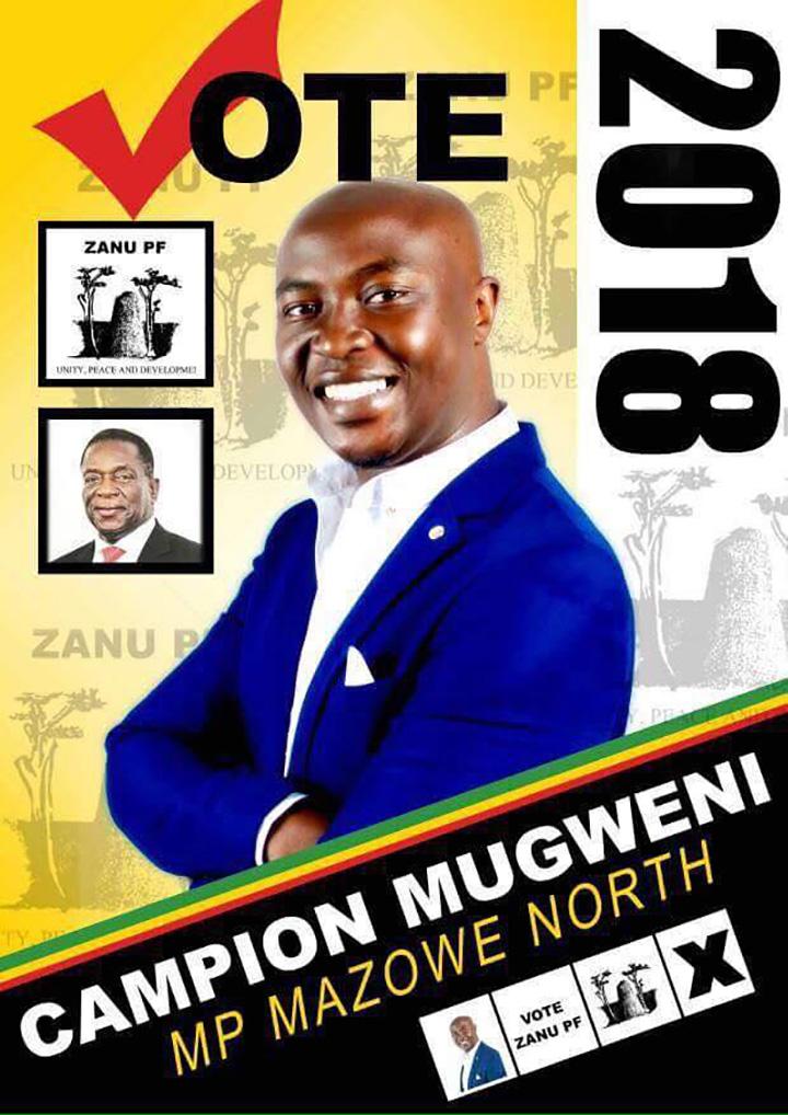 Aspirant Zanu PF legislator served jail time in the US for $1.9m tax fraud