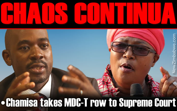 Chamisa rushes to Supreme Court over use of MDC-T name and logo