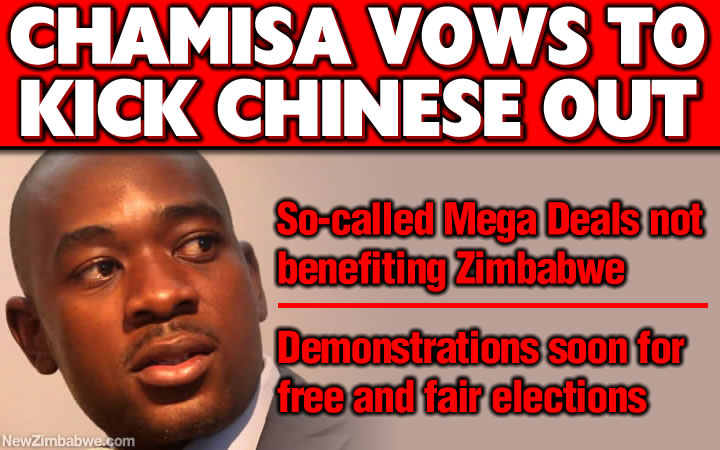 Chamisa: I will kick out Chinese investors