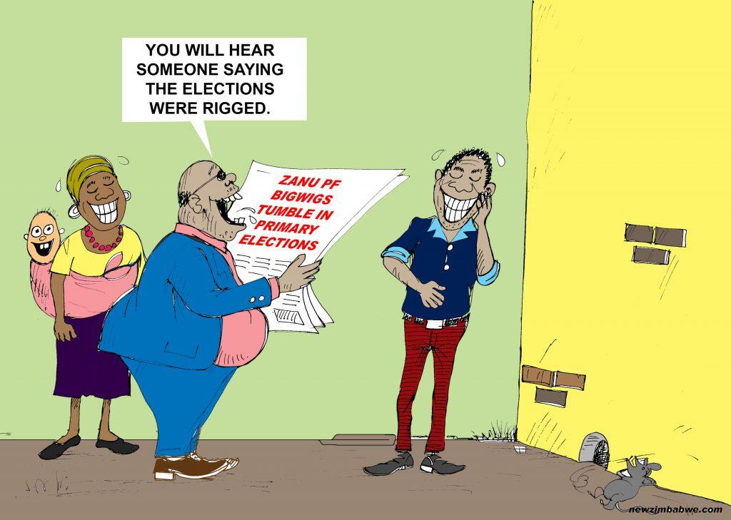 ZANU PF Chefs Fall In Primaries