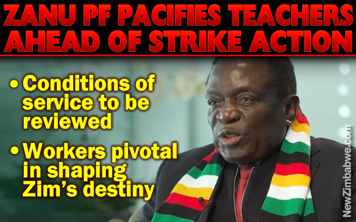 Zanu PF extends olive branch to teachers, doctors and nurses, says services to be reviewed
