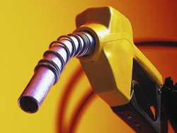 Fuel tax: killing the goose, crushing the egg