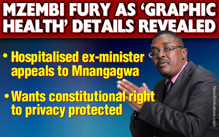 "Mzembi furious as court reveals ""graphic details"" of his illness; appeals to Mnangagwa"