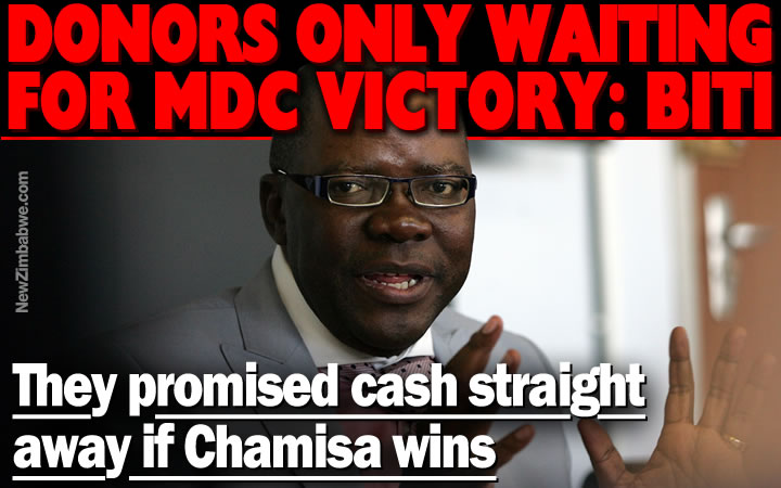 Biti: Many EU donors waiting for MDC Alliance victory