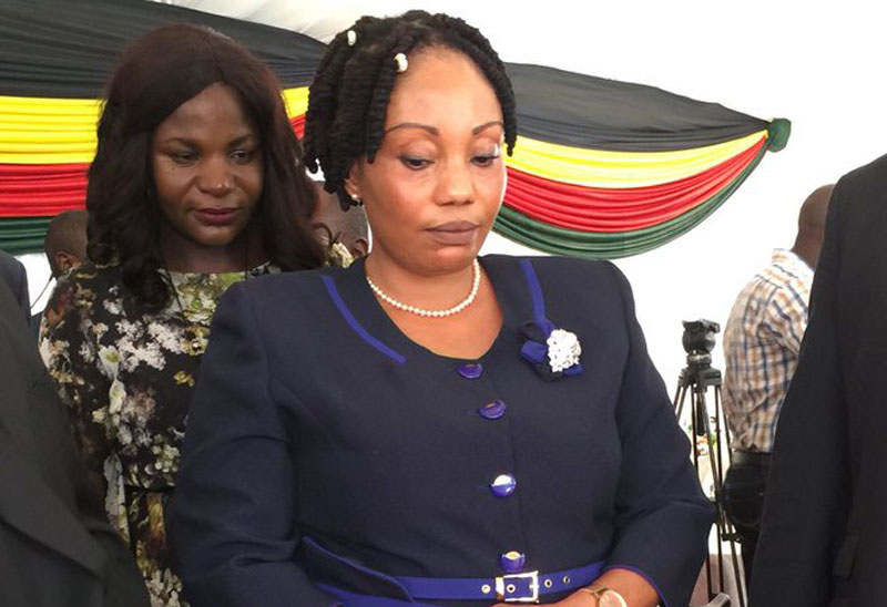 Ministry of information in charge of ZEC website, NGOs say