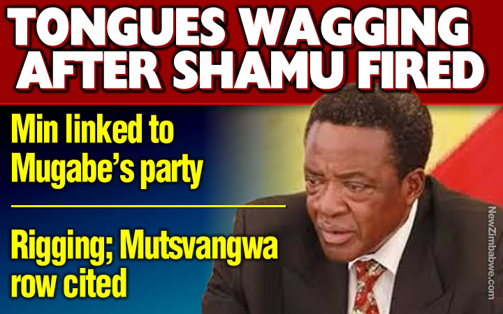 Mnangagwa fires minister Shamu; sources point to Special Advisor