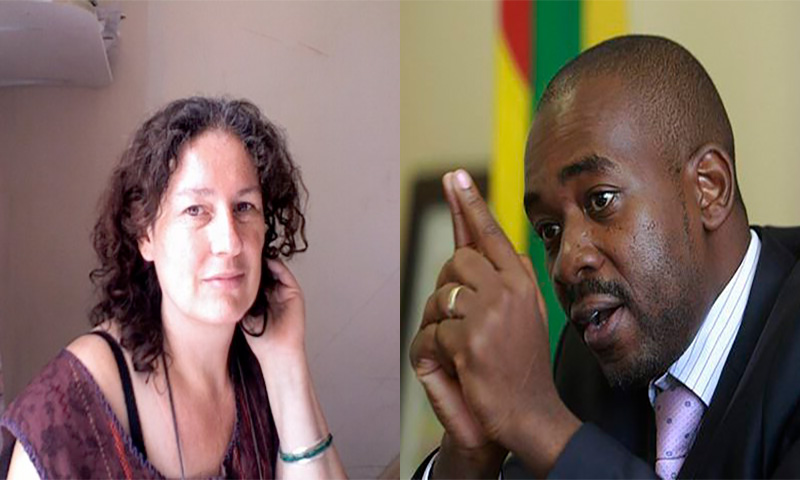 INDEPTH: UK Prof's damning Chamisa critique – he's 'out of his depth, over-excited, says some really dumb things'