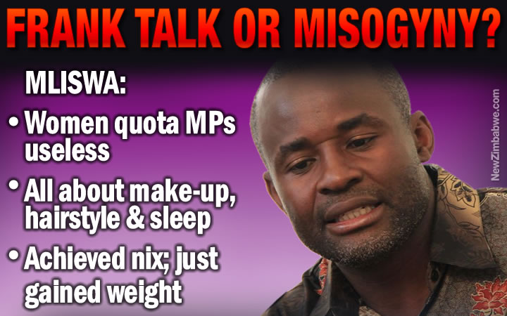 Mliswa: boot out women quota MPs, they just wear make-up, hair styles and sleep